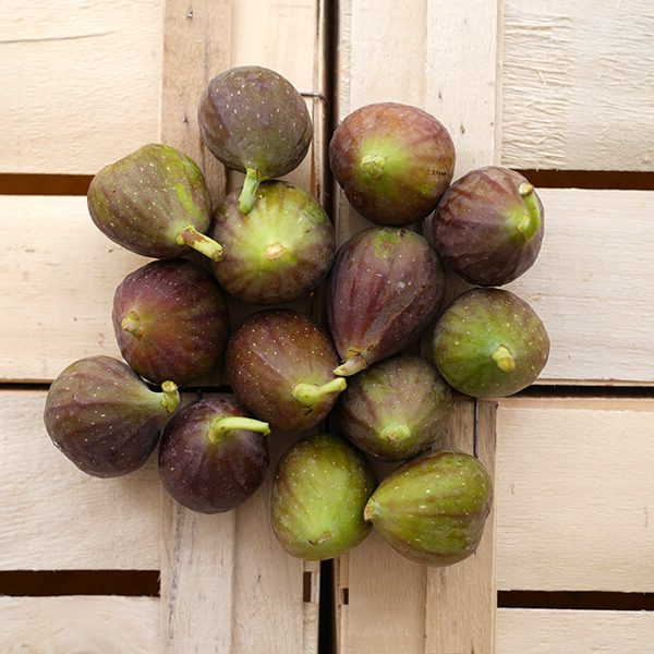 Figues blanches