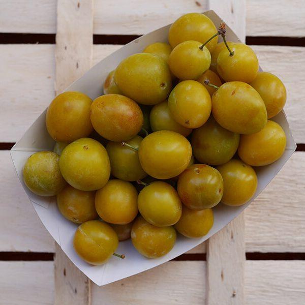 Prunes Mirabelles